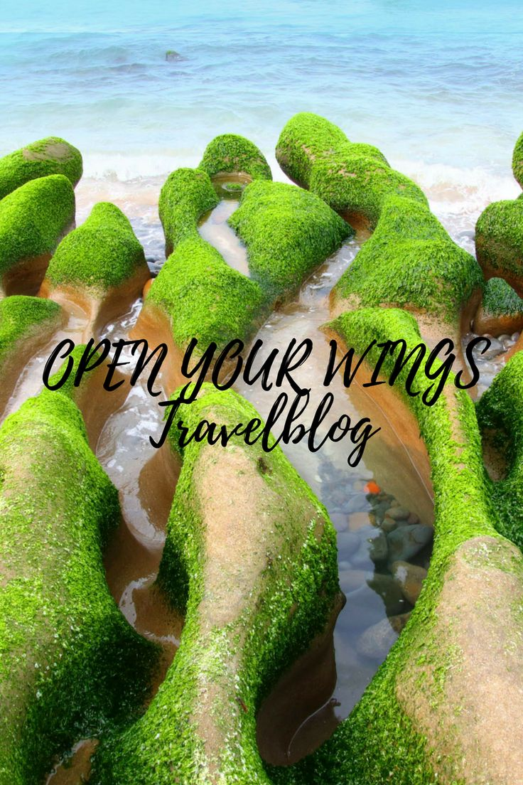 OPEN YOUR WINGS der Asienblog