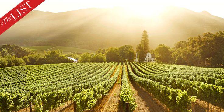 #TheLIST:+The+10+Best+Wine+Spots+in+South+Africa  - HarpersBAZAAR.com