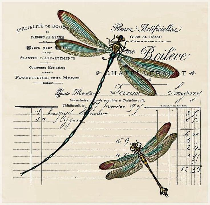 ALTERED EPHEMERA - DRAGONFLIES