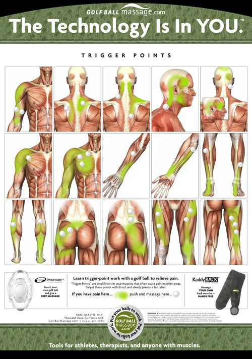 Trigger points for massage with a golf ball.