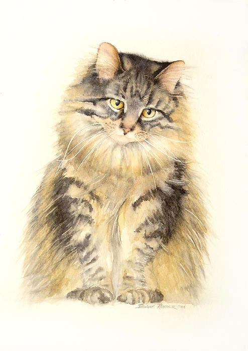 Maine Coon Watercolor  - Bonnie Rinier