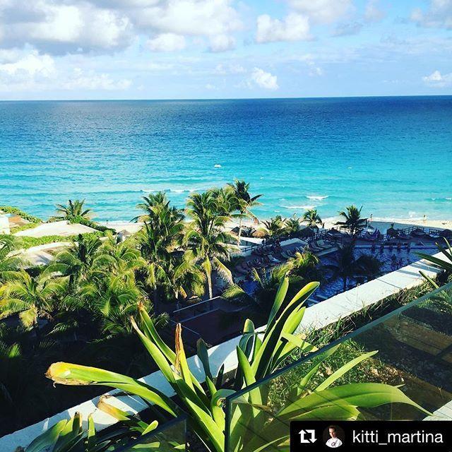 Time for a vacation 🇲🇽 We're having a great time! // Itt az ideje egy kis nyaralásnak 🇲🇽 Eddig remekül érezzük magunkat! #szegedbudokan #martialarts #academy #mexico #cancun #vacation #holiday #travel #trip #oasis #sens #palmtrees #paradise #relax #chill #sunshine #repost photo credir @kitti_martina 😘