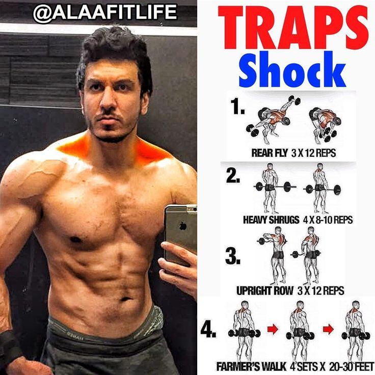 Pin By Mustafa Ali On Sport And Exercise Traps Workout Shoulder Workout Workout Programs
