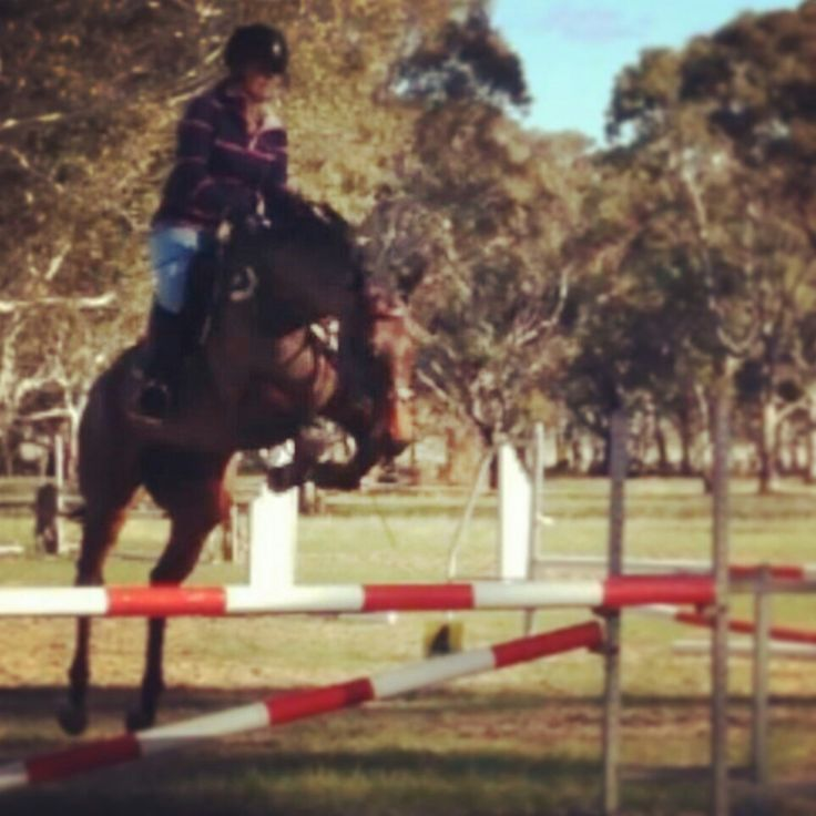 Over jumping 105cm wounder how high he really is jumping :)