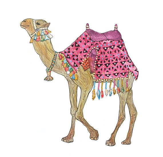 The Marrakech Camel Original Illustration with by AdriannesDesigns