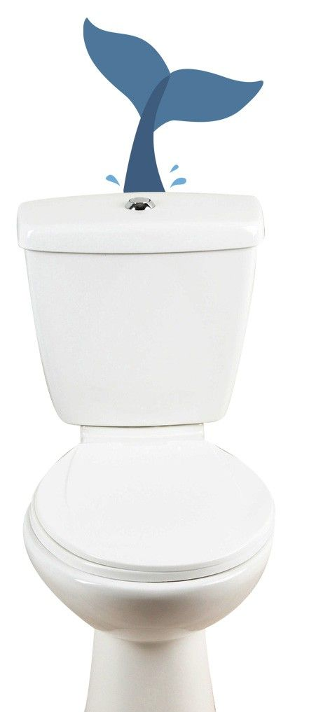 Les 18 meilleures images propos de stickers wc sur pinterest pi ces de mo - Decorer ses toilettes de facon originale ...
