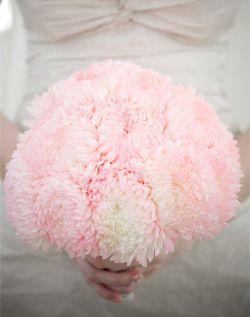 Flowerspiration! :  wedding Pink Chrysanthemum