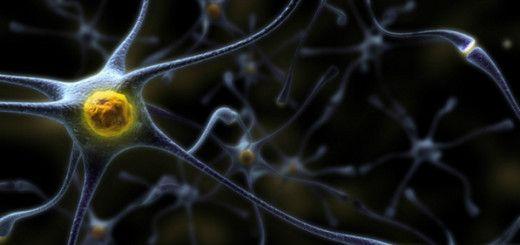Cientistas chineses descobrem provável cura para o Mal de Alzheimer!!