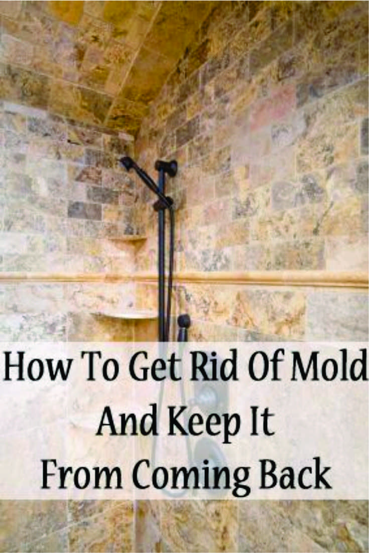 How can you tell if you have black mold  Hereus How To Identify And Remove Black Mold From Your Walls