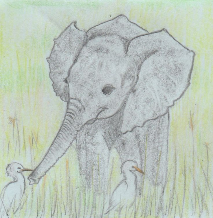 Baby elephant and egrets, pencil drawing on Post-it note, quick drawing project, Jenny Jump