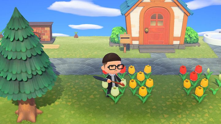 Explore Your Island Animal Crossing New Horizons For The Nintendo Switch System Bedding Plants Trees To Plant Soil Texture