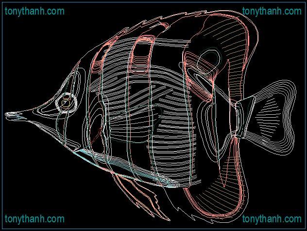 22 best Sea fish cad block dwg images on Pinterest Cad blocks, Sea - new world map cad free