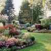 Tips for Designing the Perfect Garden. A sight that helps visualize plants, and names them!