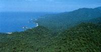 La Sierra Nevada de Santa Marta presenta un complejo mosaico de ecosistemas que va desde el litoral Caribe hasta las nieves perpetuas, pasando por extensas formaciones de matorrales semiespinosos, bosques tropicales, páramos y subpáramos en una distancia