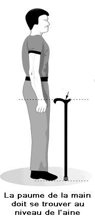 Comment mesurer la taille idéale de sa canne de marche