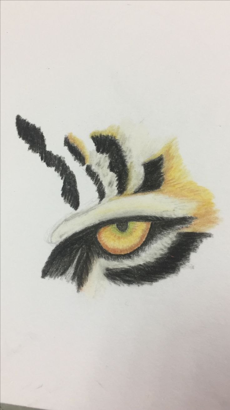 the eye of the tiger (done with soft pastels)*incomplete* ~tabs