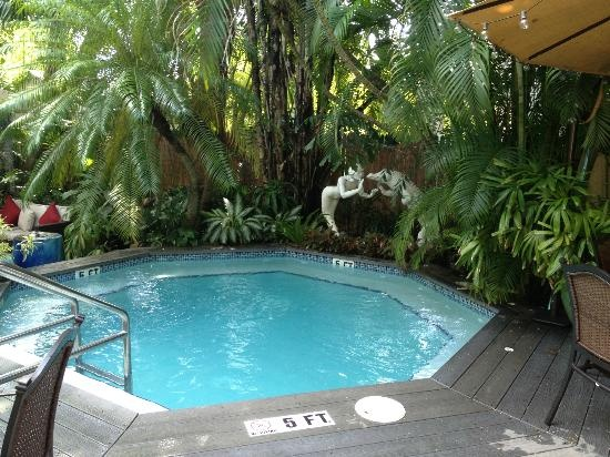 The Mermaid Alligator Spa Pool All I Need Is A Plunge To Cool Off In Key West Vacation Inspiration Pinterest Swimming Pools