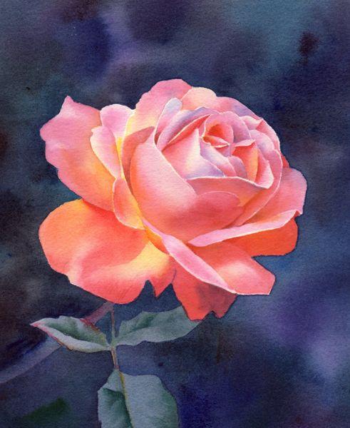 Barbara Rose - Artist - ArtVango | LinkedIn