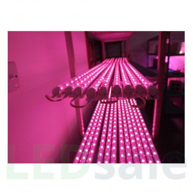 60 cm T8 10W LED vekstlys fikstur
