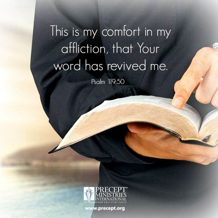 """This is my comfort in my affliction,that Your word has revived me."" (Psalm 119:50) ‪#‎precept‬ ‪#‎biblestudy‬ www.precept.org"