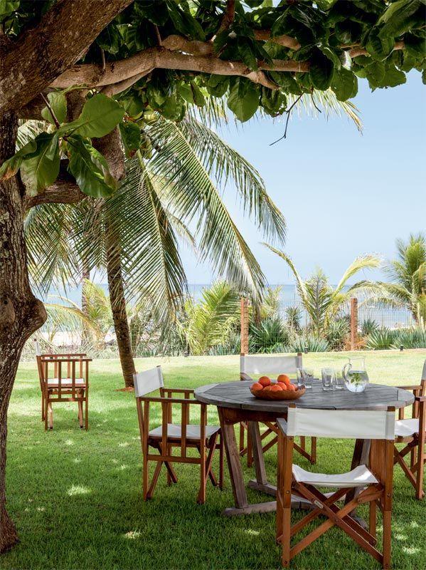 A grande amendoeira protege do sol as refeições no gramado, no canto montado com mesa e cadeiras da Tamanduá Bandeira.