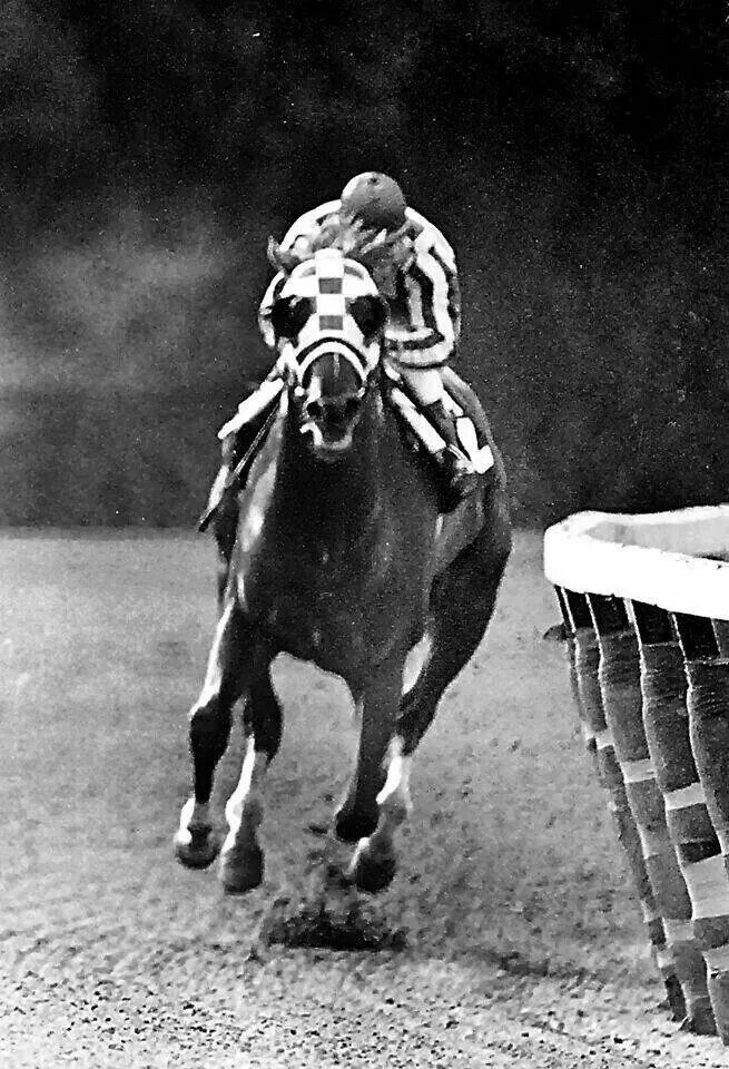 Secretariat. A legend