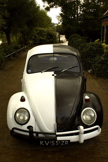 half and half black and white paintedPunch Buggy, Vw Beetles, Fashion Style, Vw Bugs, Black And White, Cars, Black White, Painting Ideas, Volkswagen