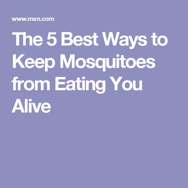 The 5 Best Ways to Keep Mosquitoes from Eating You Alive