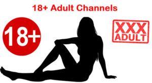 IPTV m3u List X Adult 18 Channels 13-11-2017