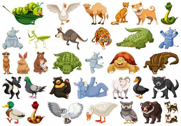 Download Set Of Wild Animal Illustrations For Free Animal Illustration Cartoon Animals Animals