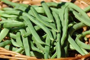 Green Bean Nutrition