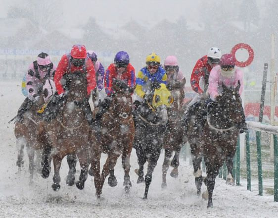 Discover horse racing betting tips for Lingfield, Southwell, Wolverhampton. Start here by getting expert info and win consistently. Get close to something big with oddsdigger!