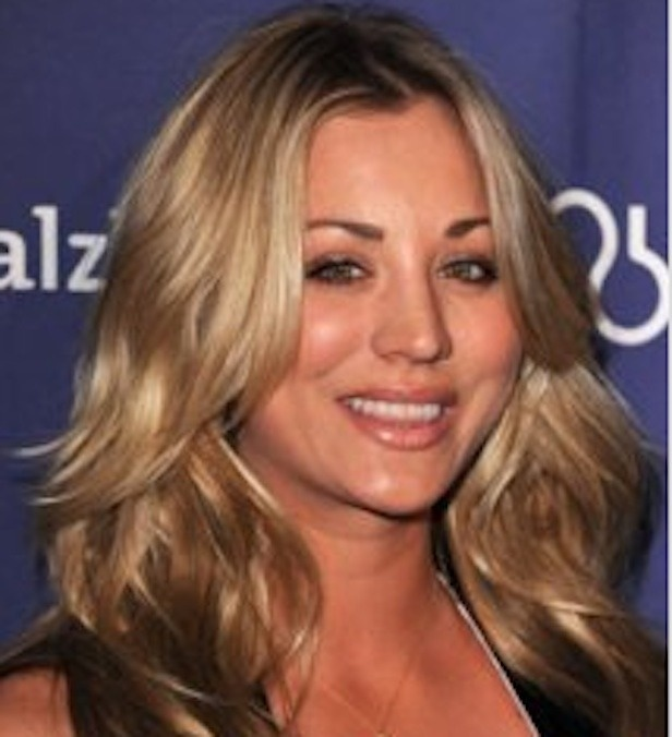 Kaley Cuoco Under Fire For Dish Tweet