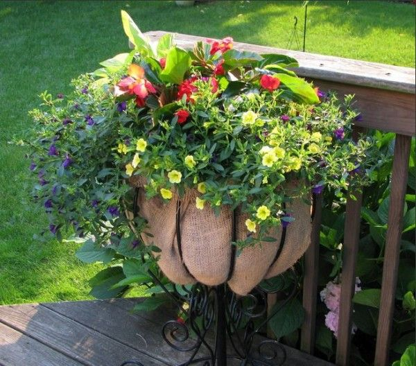 20 unique container gardening ideas