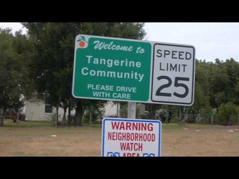 Tangerine by Edward bloor Movie Trailer