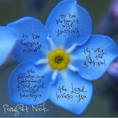 Forget-Me-Not by President Uchtdorf...: Elder Uchtdorf, Church Stuff, Flowers Quotes, Dieter F. Uchtdorf Quotes, Forget Me Not Quotes, U.S. Presidents, Lds Quotes, Churchi Stuff, Presidents Uchtdorf Quotes