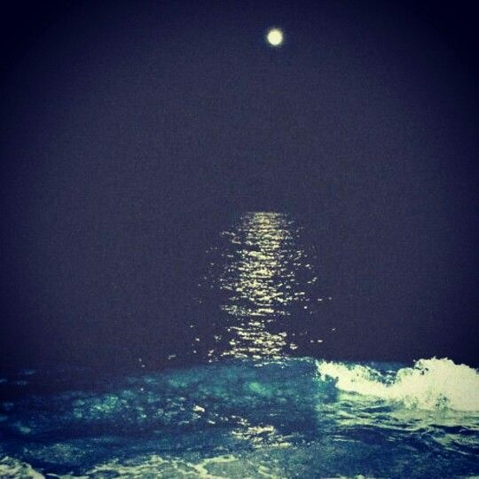 Maybe the wolf is in love with the moon and each month it cries for live it will never touch