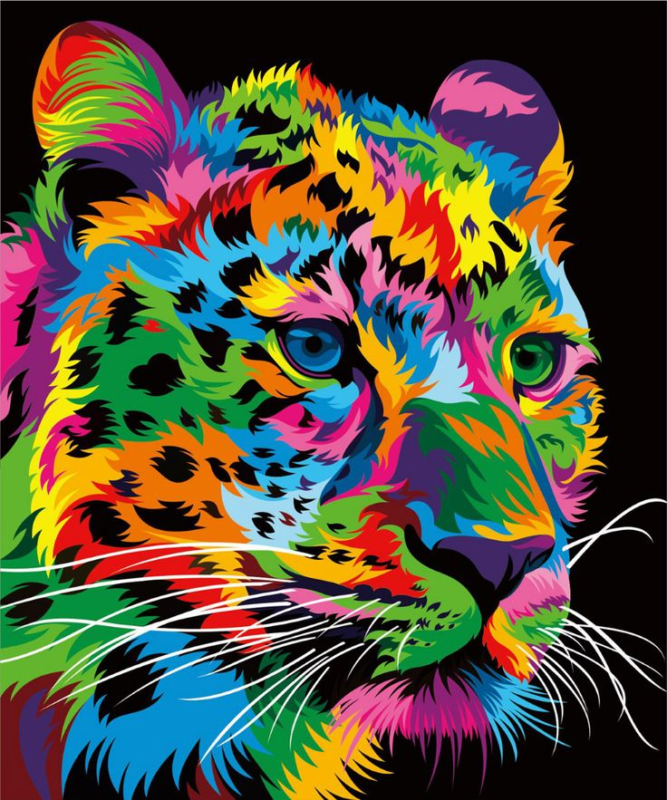Multi colored leopard 13 colorful animal vector