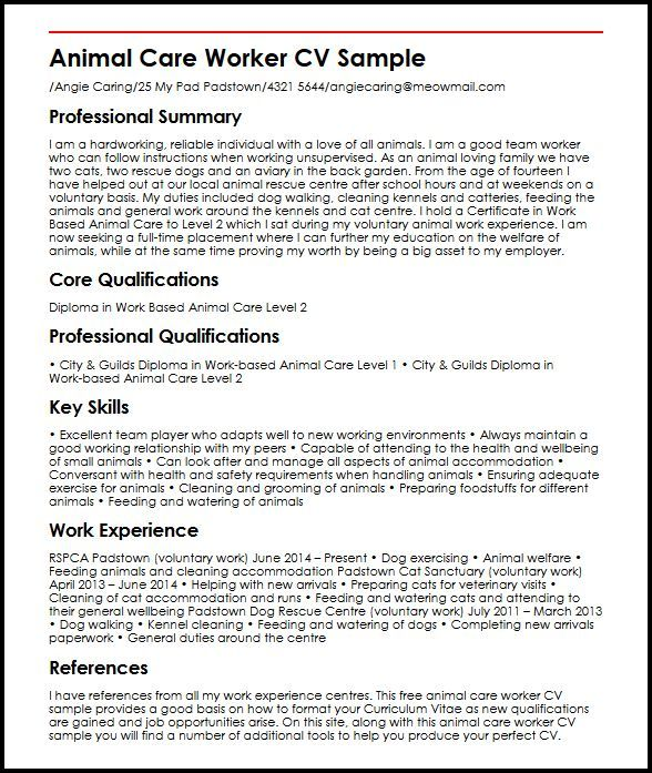 Personal Profile Resume Sample Image Result For Construction
