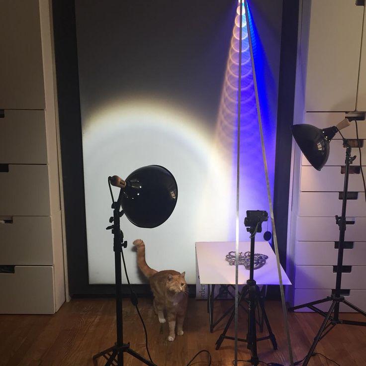 Everyone needs a one-eyed studio cat. #caturday @cats_of_instagram #3dlighting #light #lighting #lightinterference #lettherebelight #letyourlightshine #magic #magician #magicmoment #photoshoot #nebula #nebulanecklace #nebulajewelry