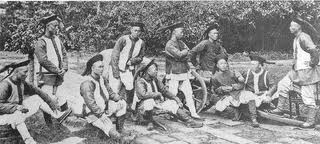 After te defeat of the Taipings, revolts they inspired failed, but they were a training ground for more serious resistance. By the end of the century, sons of the scholar-gentry and compradors became involved in plots to over throw the regime and to create a government modeled on that of the West.