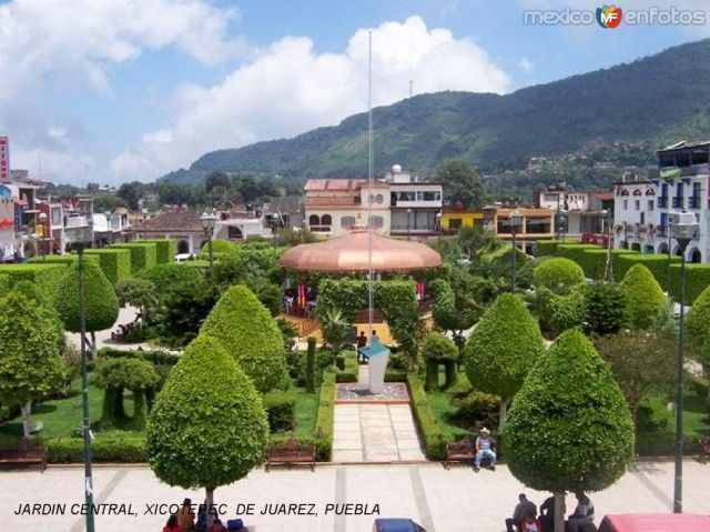 17 best images about xicotepec where i was born on for Jardin wilson nice