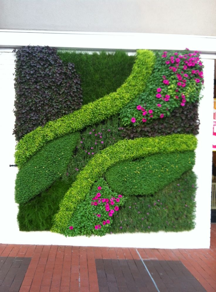 Living wall relief featuring different levels of low growing ground-cover and purple petunias.