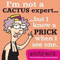 cactus expert