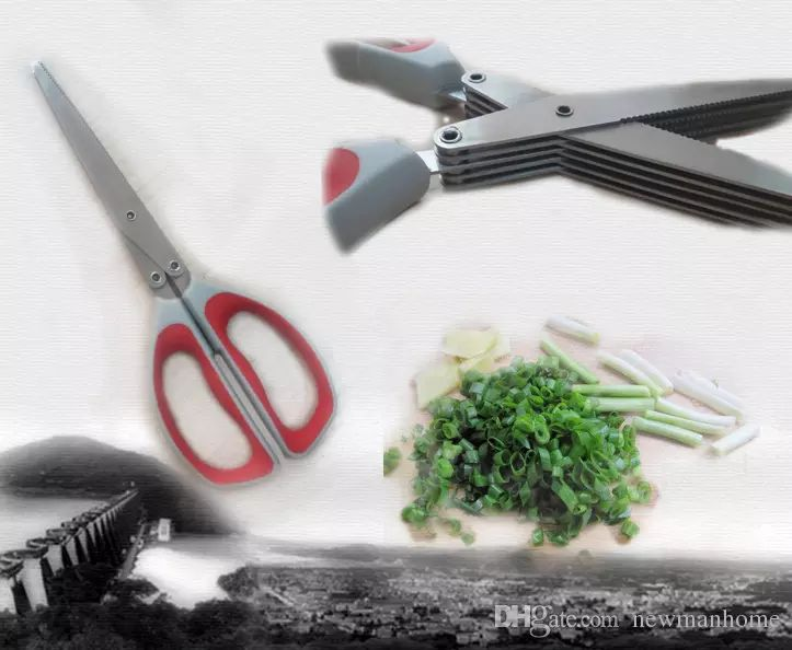 I found some amazing stuff, open it to learn more! Don't wait:https://m.dhgate.com/product/multiple-layers-scissors-for-vegetable-slicing/398630212.html