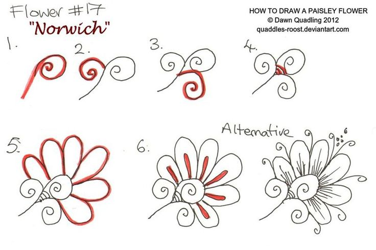 17 best images about zentangle botanical nature on Teach me how to draw a flower
