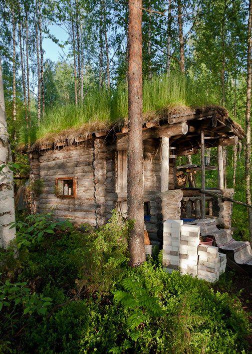 Old smoke sauna Kuukasjärvi Saunan katolla kasvaa Viikamaan mukaan kukkia ja puita Savusaunan omistaja Seija Vikamaa, 69,…