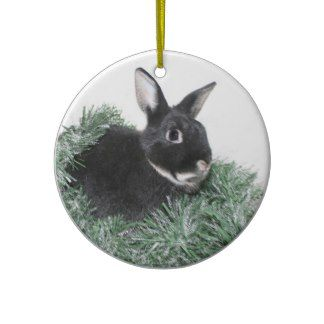 Hoppy Holidays Christmas Tree Ornaments