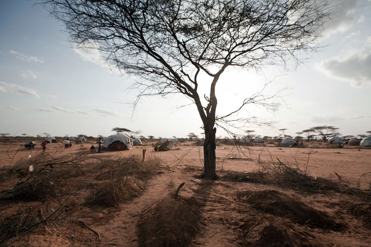 Dadaab Refugee Camp (The Horn of Africa)