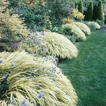 Best Plants for Landscape Edging ▇  #Home ❀ #Landscape #Design via Christina Khandan, Irvine California ༺ ℭƘ ༻